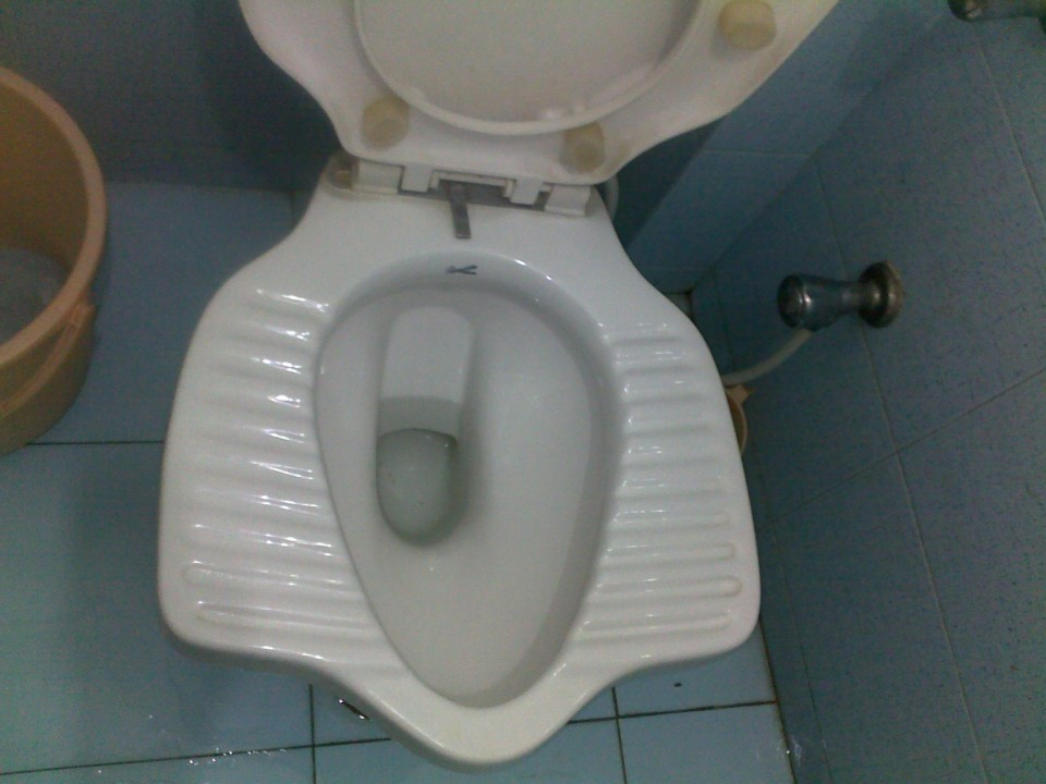 A special toilet ready for sitting or squatting on.