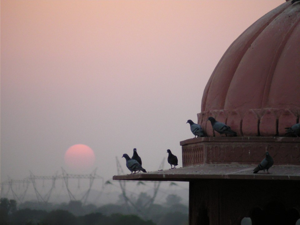 Sunset from a palace roof-top in India.